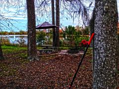 Raking Leaves At Lake George Georgia.jpg