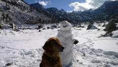 Roxy Snowman